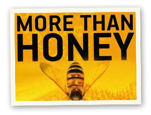 Film: More Than Honey