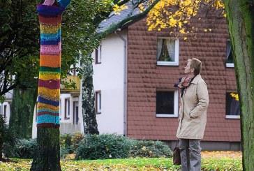 Kuriosität für den Winter: Baum-Mode!