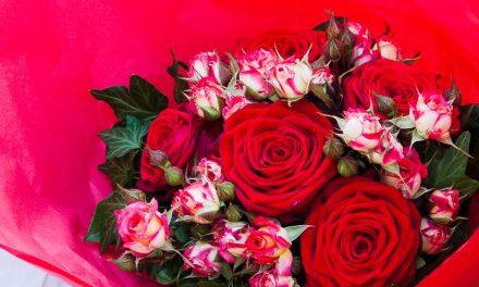 Frühlingsgefühle: 10 Geschenkideen für Gärtner zum Valentinstag