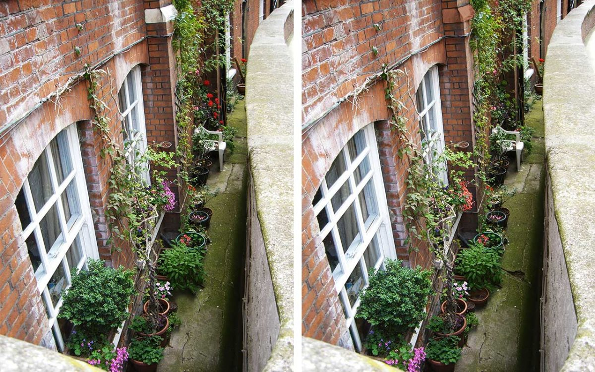 Garten-Vergleichsbild: Sechs Unterschiede zwischen linkem und rechtem Bild.