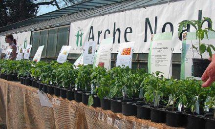 ARCHE NOAH Pflanzenmarkt und Raritätenbörse in Wien (2010)