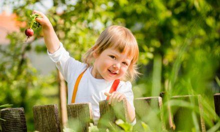 Gnome im Garten – Einen sicheren Garten für Kinder schaffen