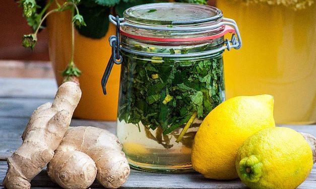 Erfrischender Zitronenmelissesirup für heiße Sommertage