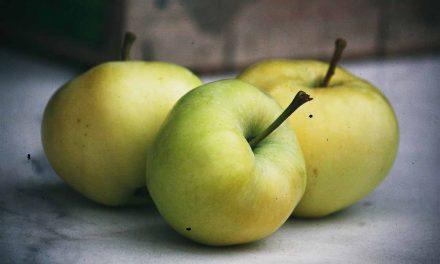 Der erste Apfel des Jahres: der weiße Klarapfel