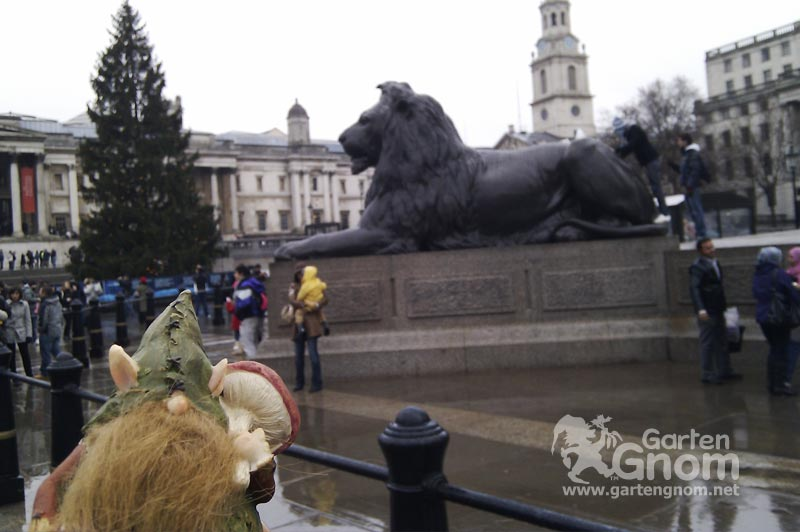 Der GartenGnom am Trafalgar Square in London.