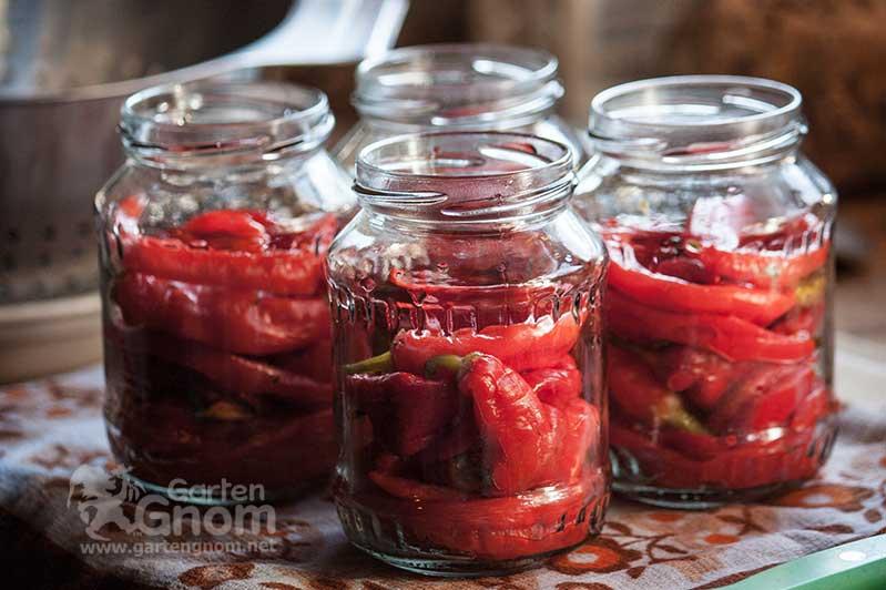 Chili und Pepperoni einlegen in Essig einlegen.