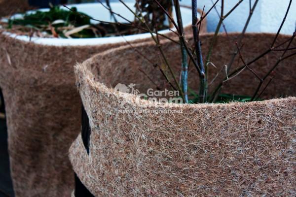 Pflanztöpfe umwickelt mit Matten aus Kokosfaser als Winterschutz.