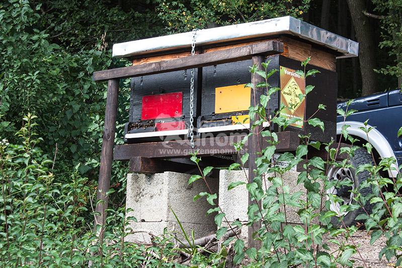 Bienenstöcke über einer Bienenweide.