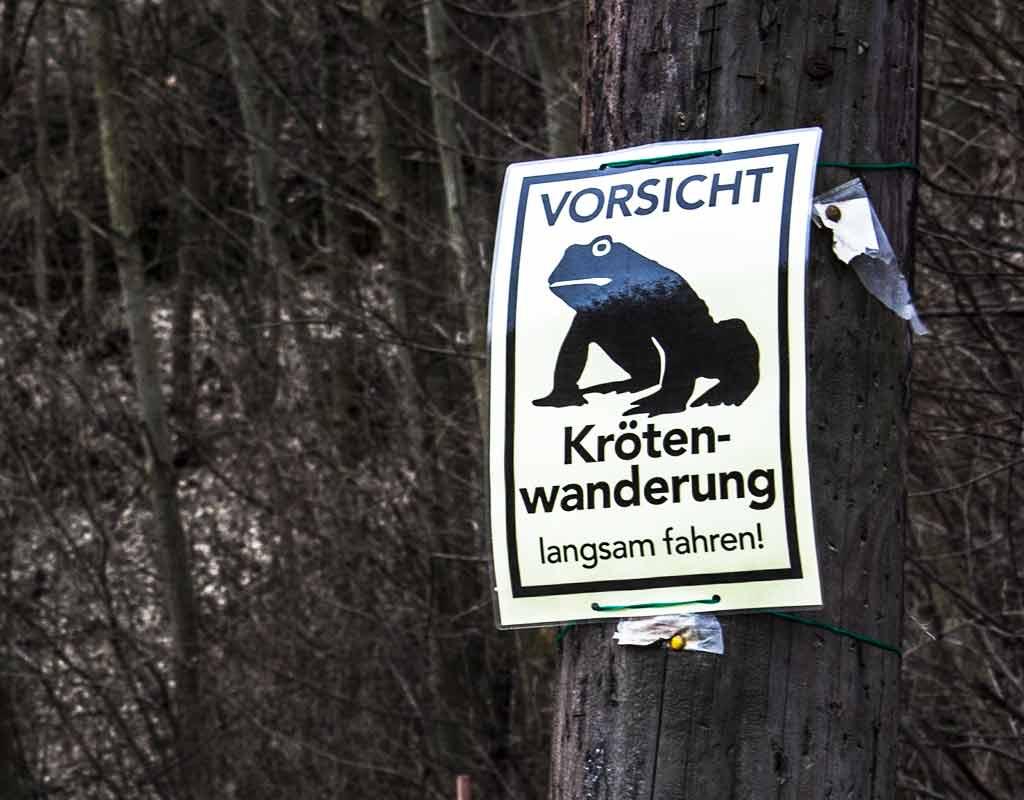 Download: Vorsicht Krötenwanderung Schilder