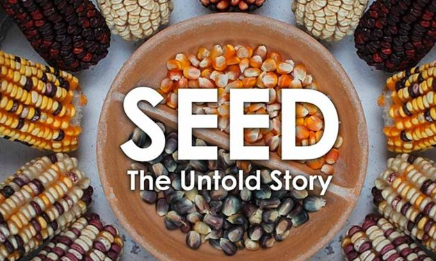 Crowdfunding-Film: SEED – The Untold Story
