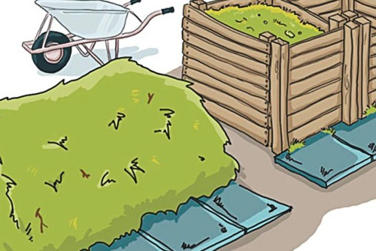 Kompost, das schwarze Gold des Gartens
