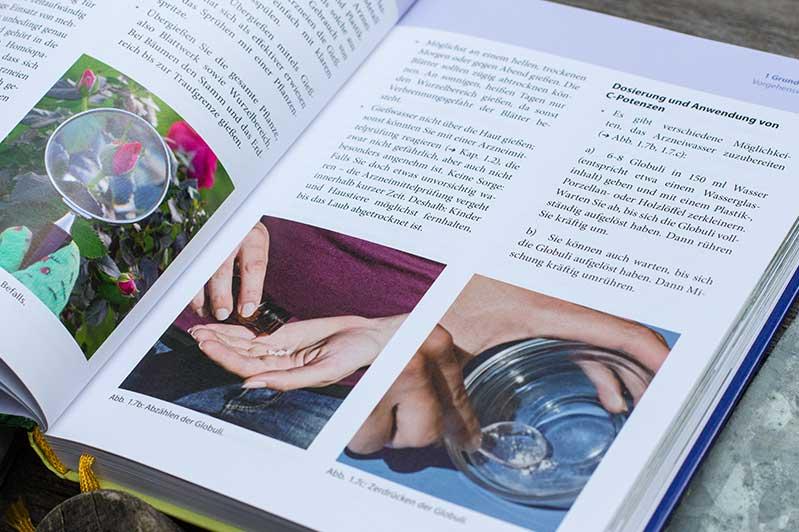 """Grundlagen-Kapitel des Buchs """"Homöopathie für Pflanzen"""" von Christiane Maute."""