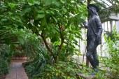 20+ Anzeichen, dass dich die Garten-Leidenschaft gepackt hat…