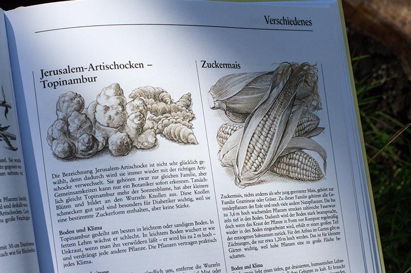 """Pflanzen-Beschreibungen im Buch """"Selbstversorgung aus dem Garten"""" von John Seymour."""