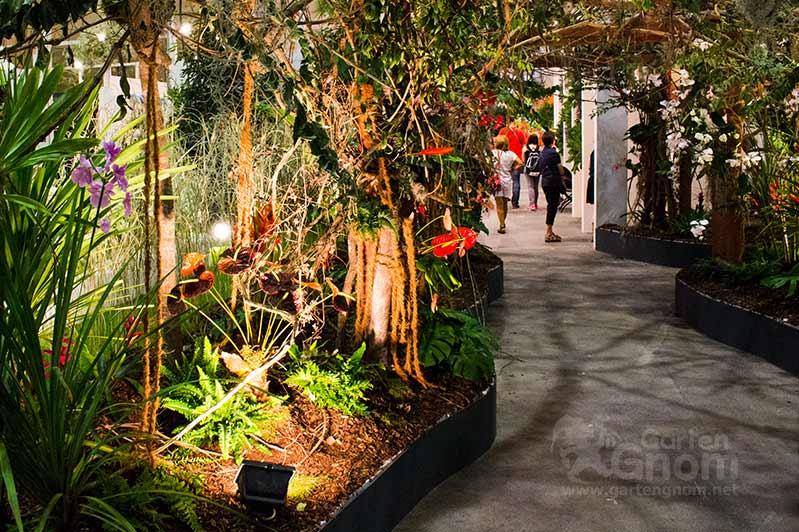 Dschungel auf der Interneationalen Gartenbaumesse Tulln 2016.