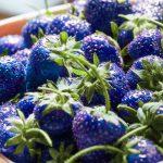 Gibt es tatsächlich blaue Erdbeeren?