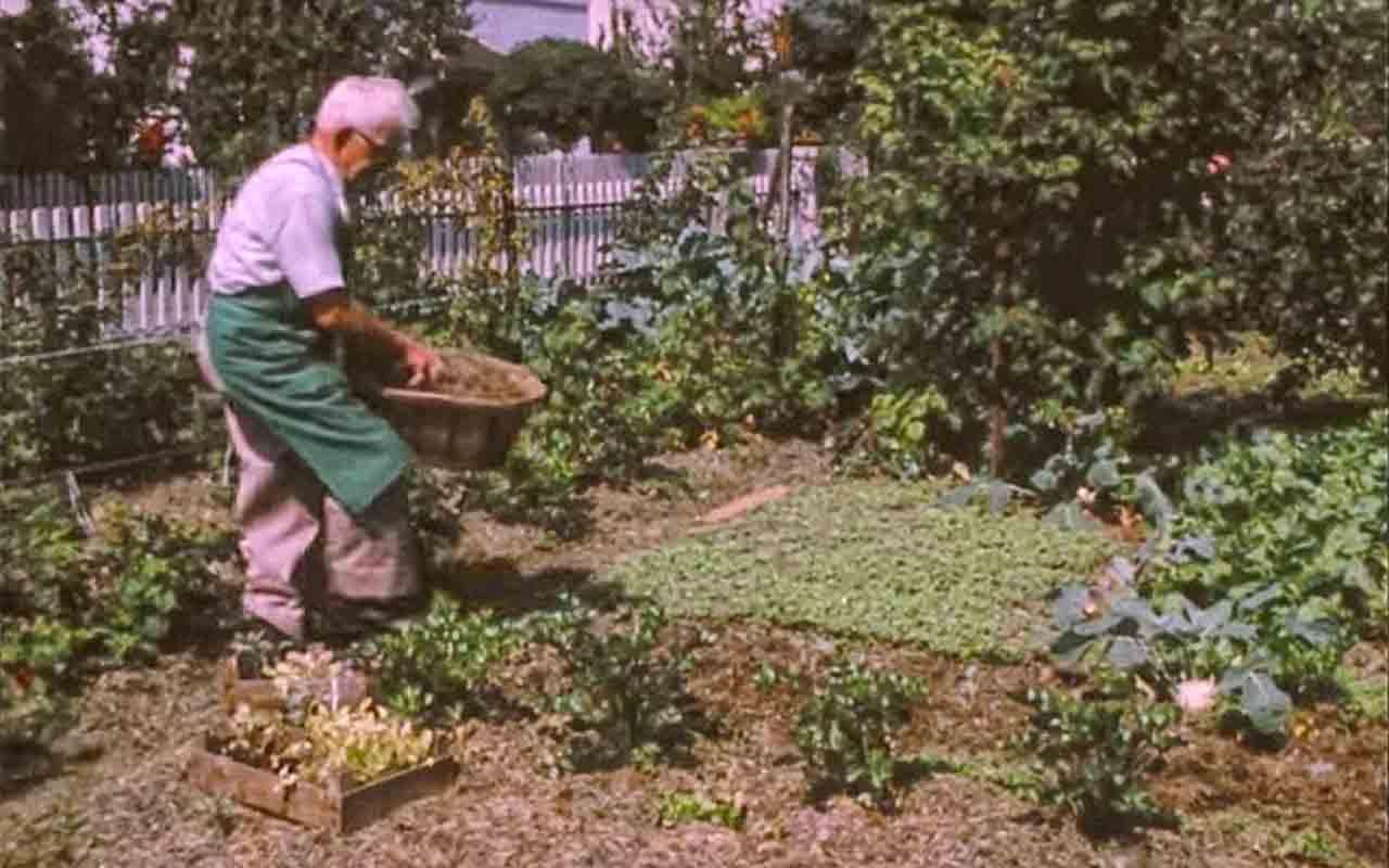 Biologisch Gärtnern: Fernsehbericht von 1975!