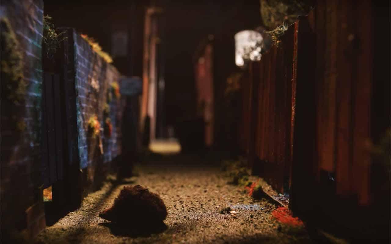 Igel Animationsfilm: Hedgehog Close