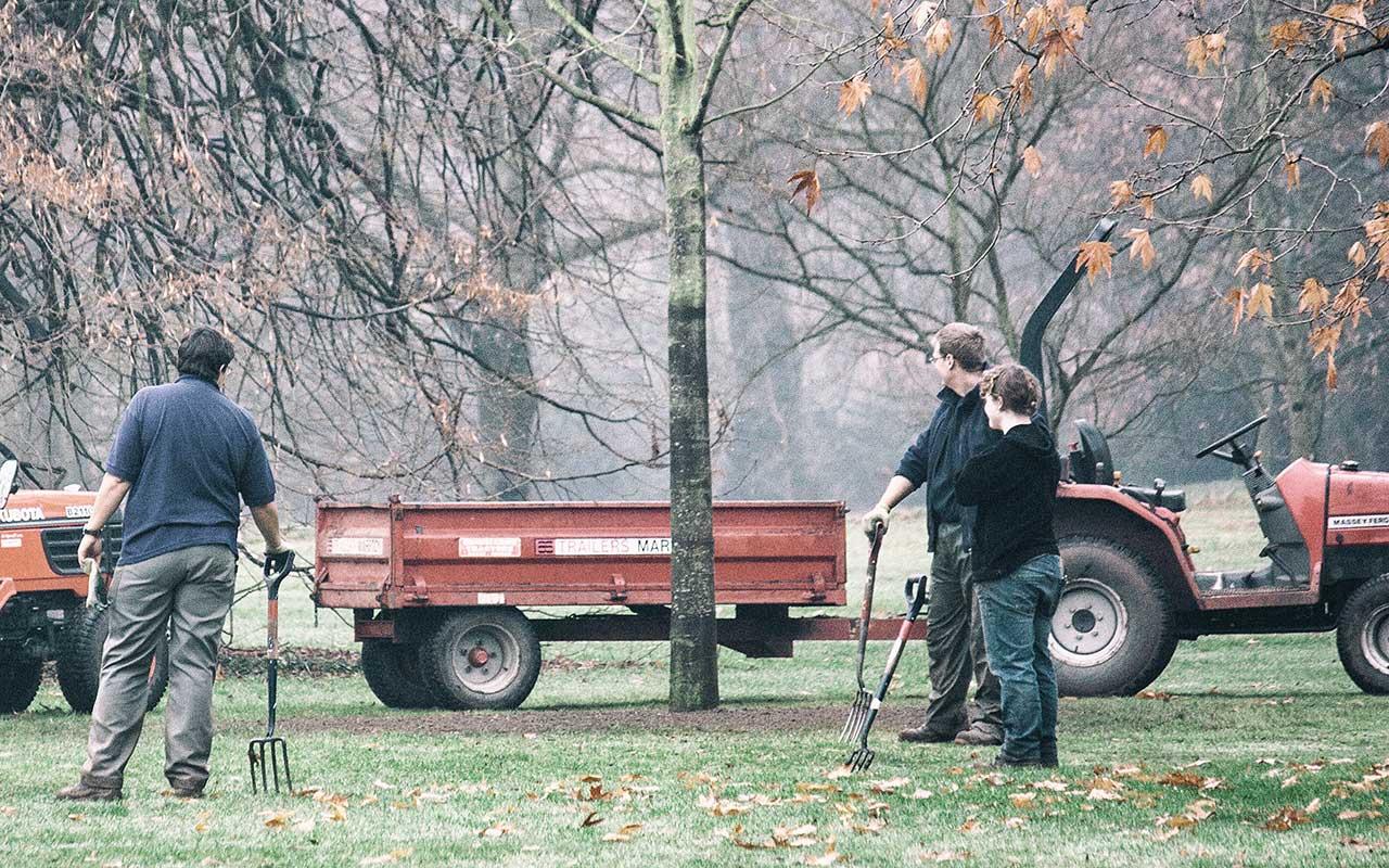 Gartenarbeiten im Jänner – Auch im Winter gibt es keine Pause