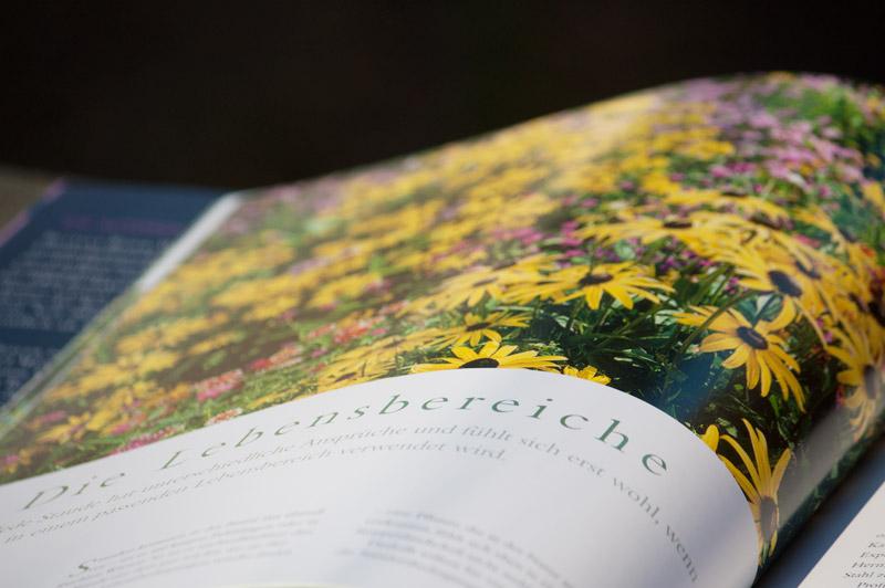 Bilderseite: Stauden im Garten - Callwey Verlag