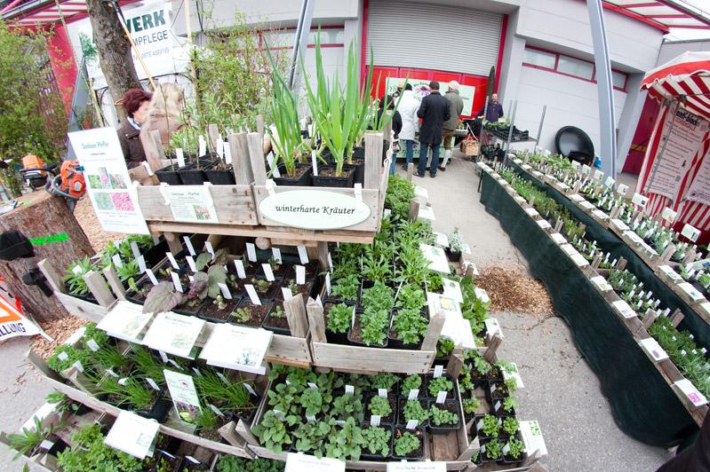 """Pflanzenmarkt auf der Messe """"Blühendes Österreich"""" 2012"""