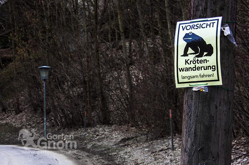 Vorsicht Krötenwanderung Schild