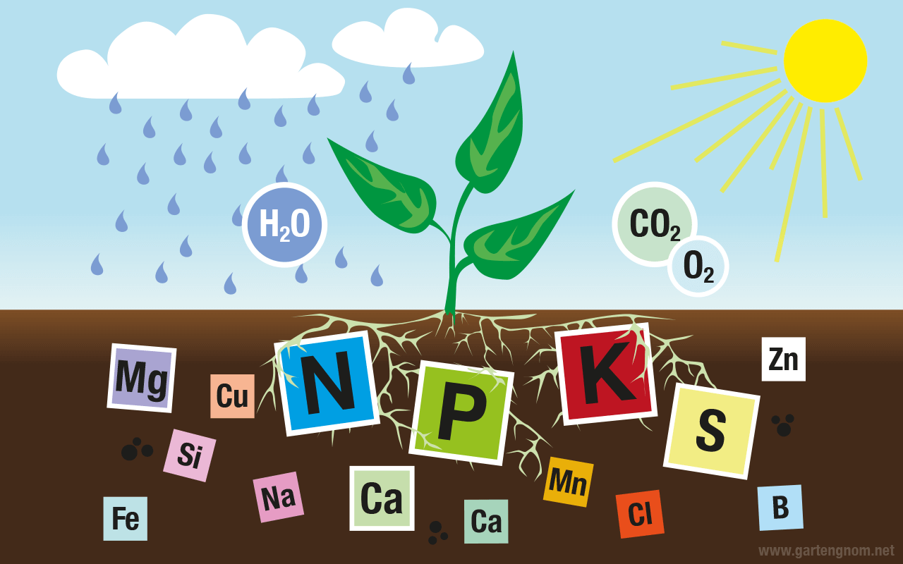 Illustration: Nährstoffe für Pflanzen