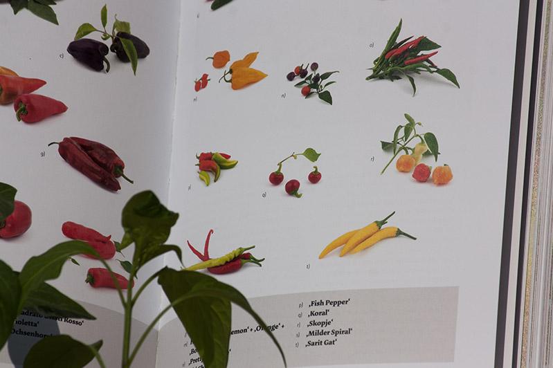 Das große Biogarten-Buch: Inhalt