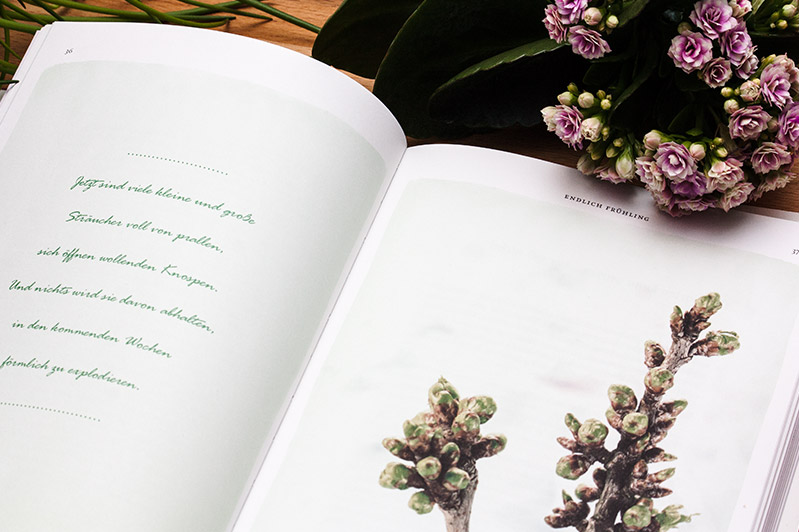 Inhalt: Alles was Sie schon immer übers Gärtnern wissen wollten