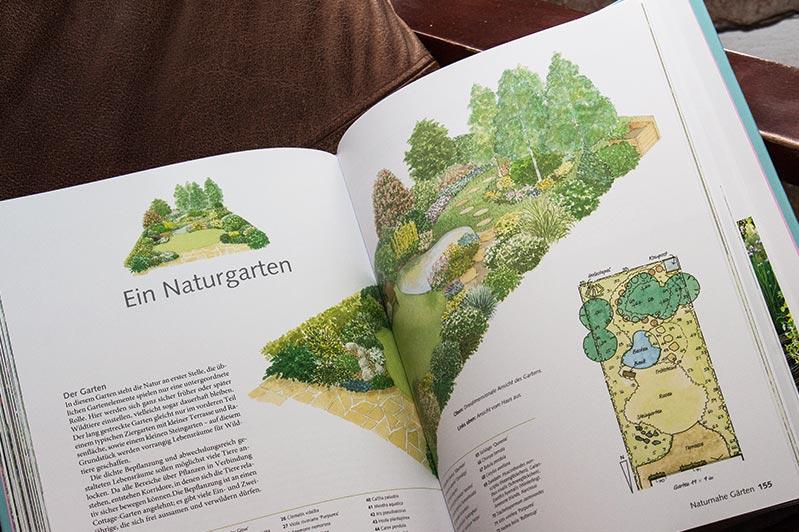 Mustergarten: Naturgarten