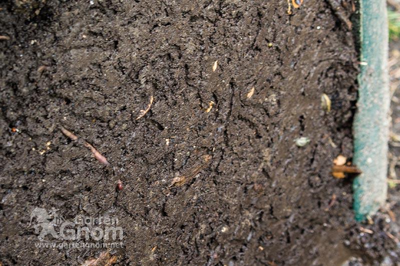 Gereifter Kompost mit Kleintieren