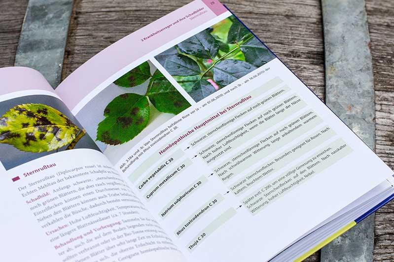 """Detailseite zu Sternrußtau im Buch """"Homöopathie für Pflanzen""""."""