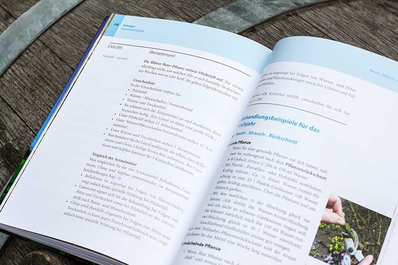 """Übungsbeispiel im Buch """"Homöopathie für Pflanzen""""."""