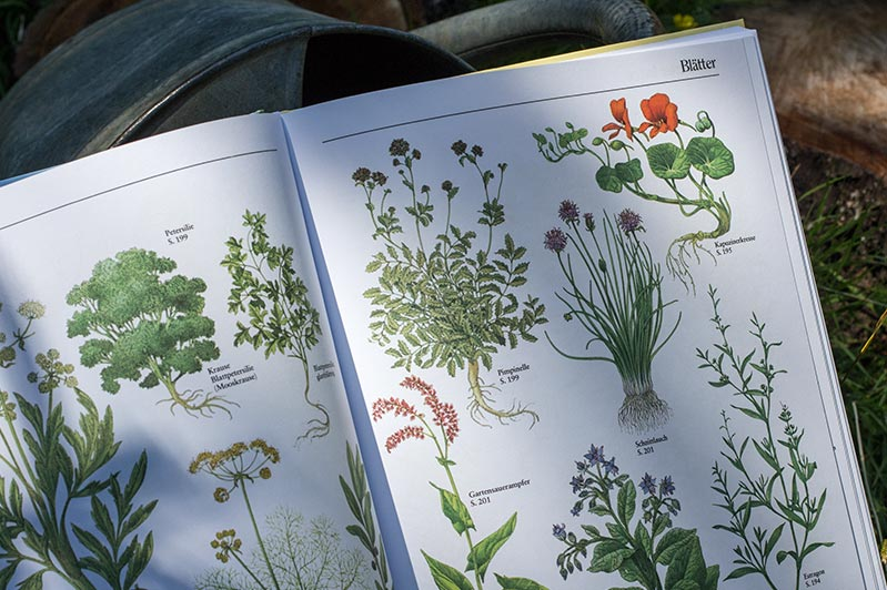 """Bildertafel im Buch """"Selbstversorgung aus dem Garten"""" von John Seymour."""