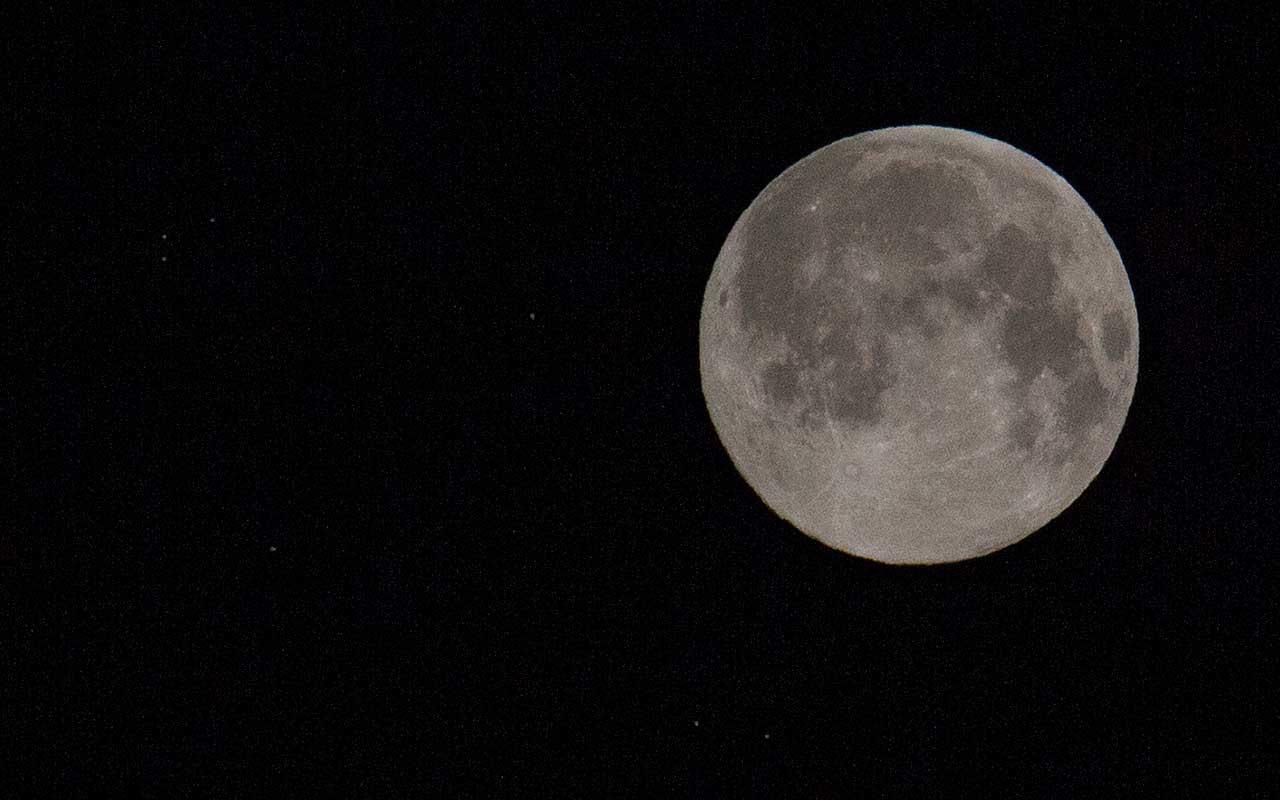 Was bringt Gärtnern mit dem Mond?