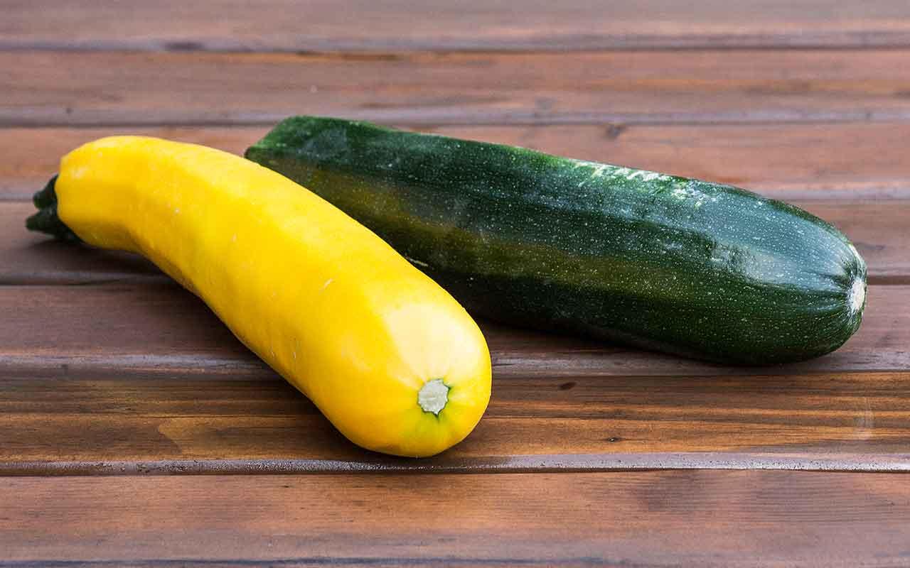 Zucchini FAQ: Probleme und Tipps beim Zucchini Anbau